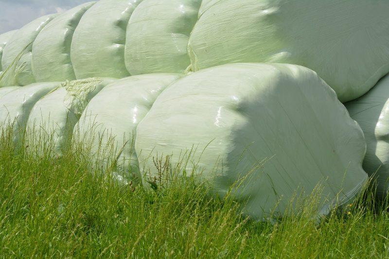 Film agricolo: sostenibilità e sviluppo