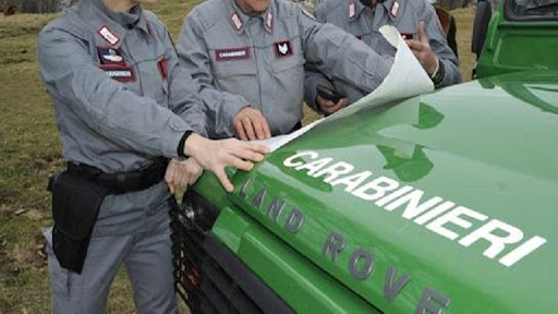 Bruciano rifiuti plastici: denunciati